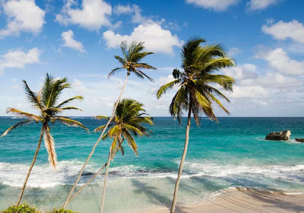 Famosa por sus playas, jardines botánicos y edificios coloniales.