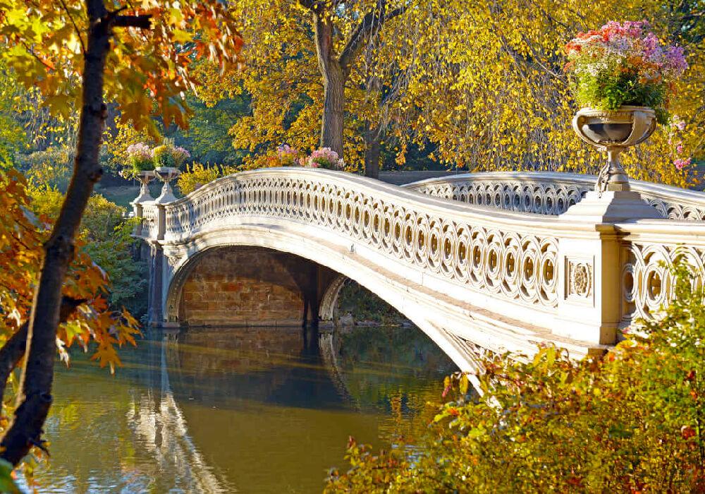 Puente de hierro que cruza por el lago de central park, famoso por aparecer en diversas películas y series televisivas.