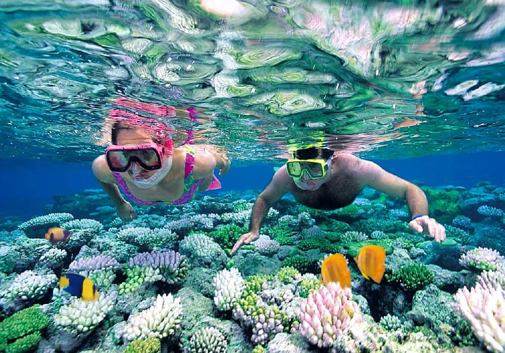 Realiza la actividad de Esnórquel en los corales de la Riviera Maya.