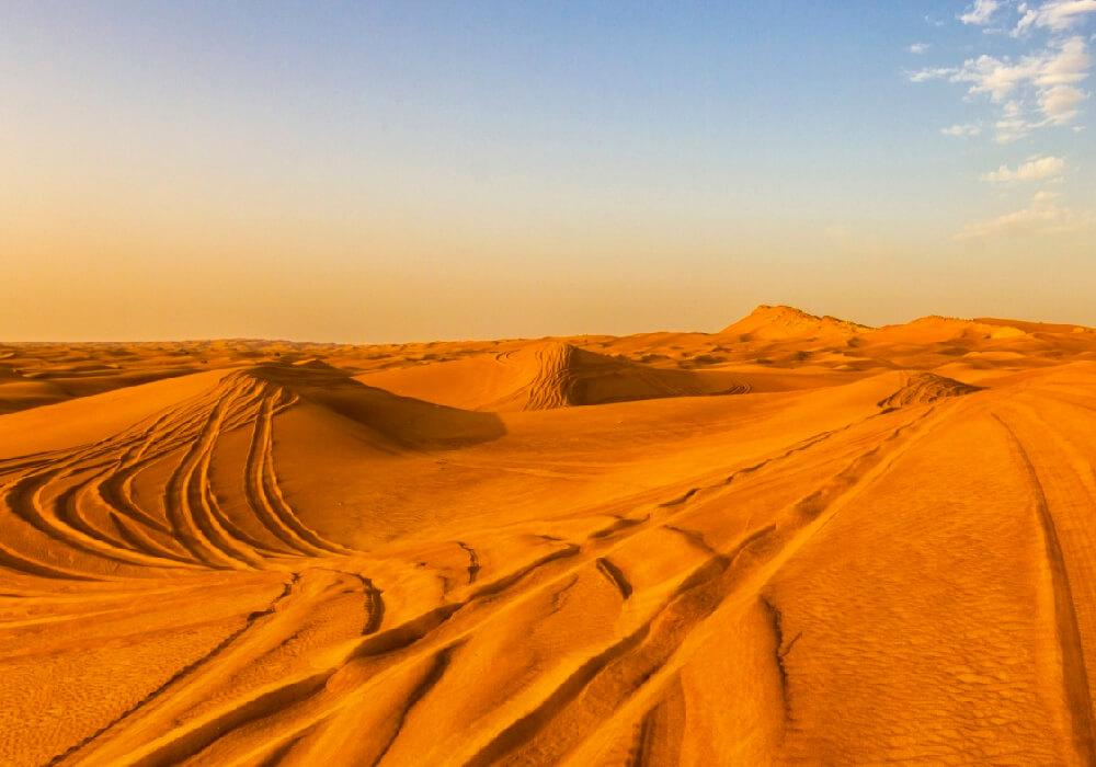 Estas son unas de las mejores dunas del mundo y en ellas puedes realizar actividades propias de la arena y contemplar varias especies.