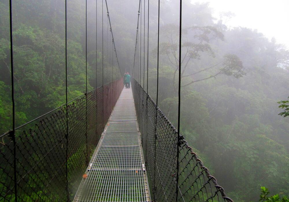 Este lugar es famoso por sus bosques escondidos entre las nubes y neblina.
