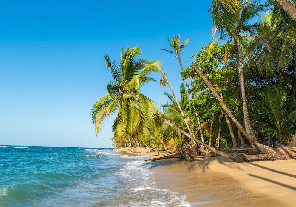 En Puerto Viejo existen hermosas playas de un atractivo natural inigualable, una auténtica joya en la orilla del Caribe.