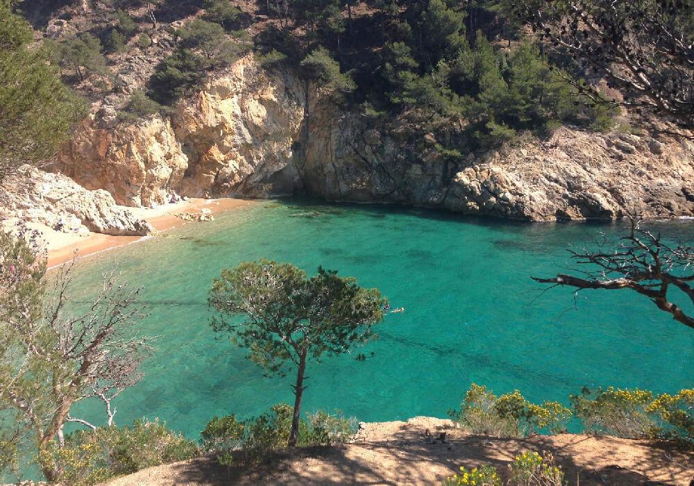 Ésta hermosa playa está ubicada entre pinares; en ella podrás encontrar campings, aseos y duchas.