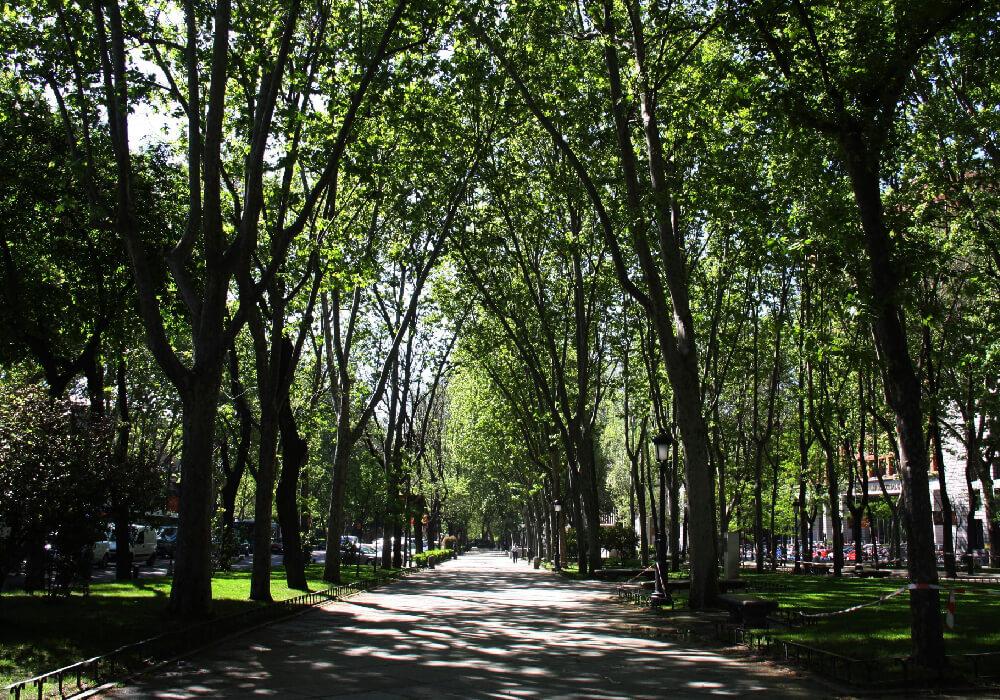 Bulevar que va desde la Plaza de Cibeles hasta la Plaza del Emperador Carlos.