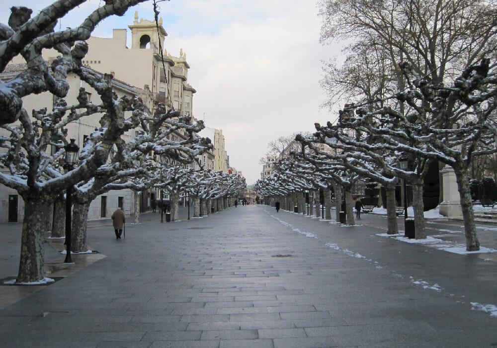 Una de las avenidas arboladas más hermosas de Burgos.