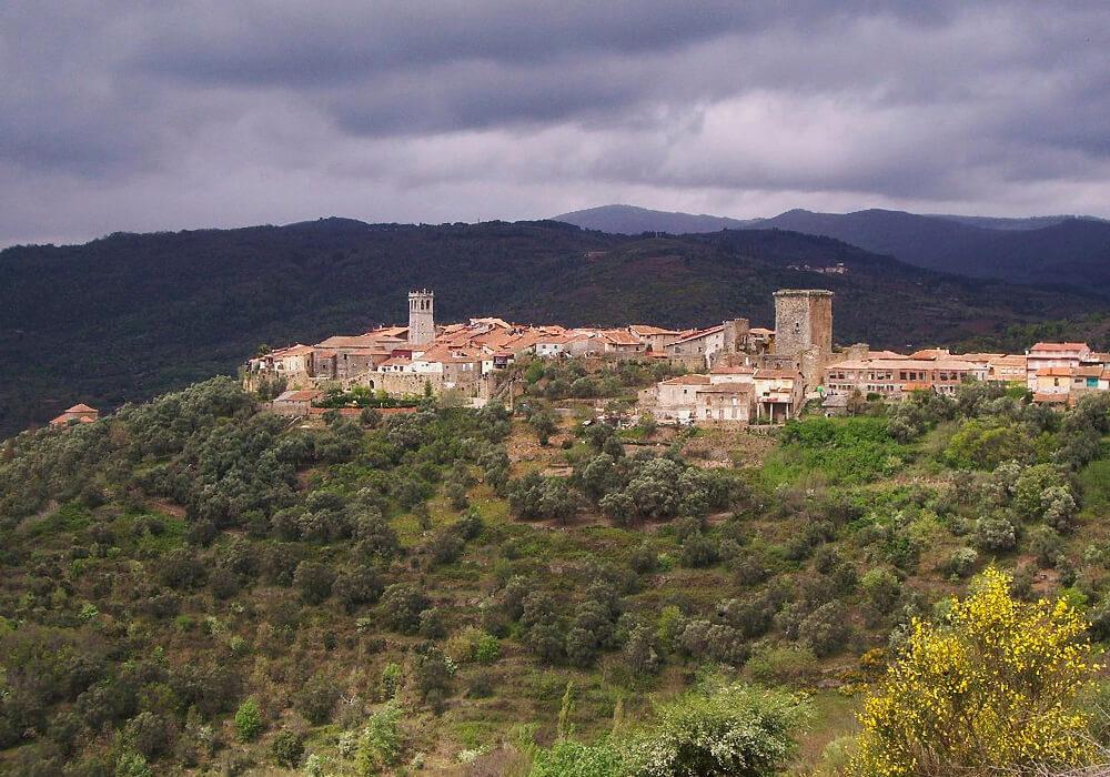 No olvides que esta zona ofrece cultura vinícola milenaria.