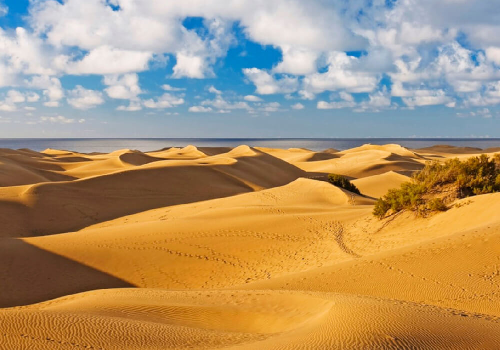 Arena Dorada, playa que su arena presenta formas de dunas, en Gran Canaria.