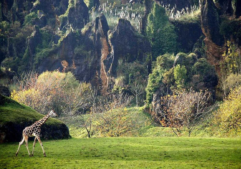Escapada en la naturaleza de Cantabria.