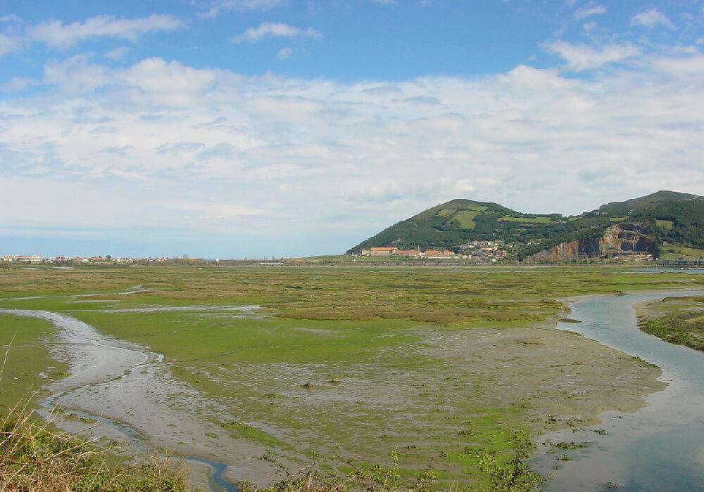 Si buscas un momento de paz en tu escapada, sin duda tu lugar es el Parque de las Marismas de Santoña.