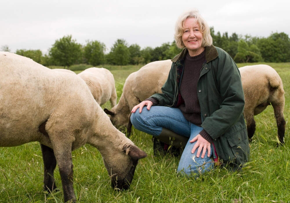 La práctica del pastoreo es una actividad típica que se realiza en Navarra.