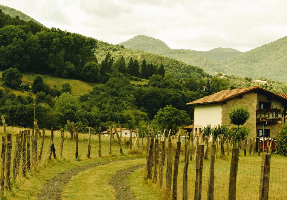 Hermosa zona con laderas, prados y bosques de película.