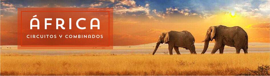 Viajes Organizados por África 2020