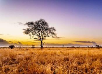 Viajes Sudáfrica 2019: Viaje por Sudáfrica Imprescindible