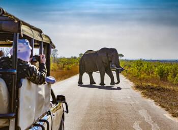 Viajes Sudáfrica 2019-2020: Viaje por Sudáfrica Imprescindible