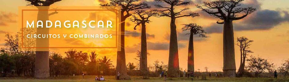 Circuitos por Madagascar 2019