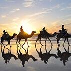 Paseo en Camello tanger