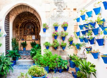 Viajes Andalucía 2019-2020: Viaje al Festival de los Patios de Córdoba 2020