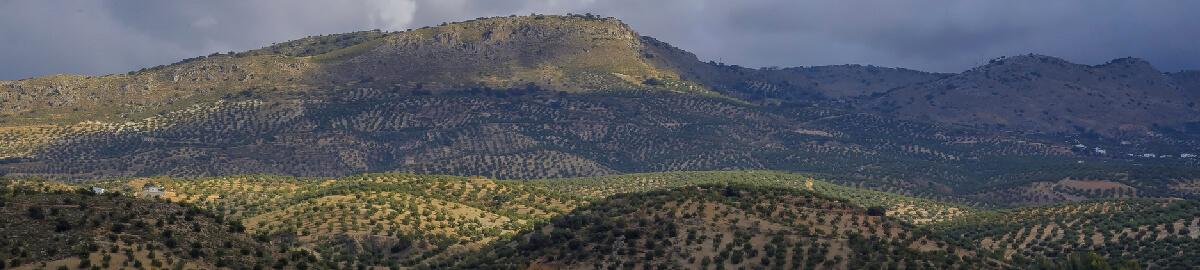 Córdoba, pueblos de la Subbética y Caminito del Rey, Semana Santa 2021
