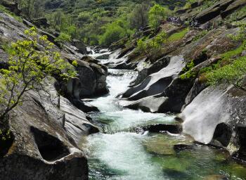 Viajes Extremadura 2019-2020: Viaje Valle del Jerte El Cerezo en Flor 2020